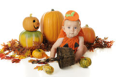 Baby Surrounded by Pumpkins Stock Image