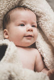Baby swaddle with towel Royalty Free Stock Images