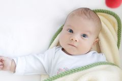 Baby Swaddled Royalty Free Stock Images