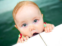 Baby swimmer. Portrait of little baby swimming  in swimming pool Stock Images