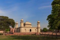 Baby Taj royalty-vrije stock fotografie