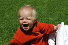 Baby tantrum. A cute little caucasian white baby girl with uneasy facial expression screaming while sitting on the lawn in the backyard outdoors Royalty Free Stock Photo