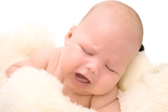 Baby and teddy Royalty Free Stock Photography