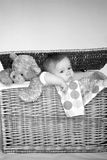 Baby and Teddy Stock Photography