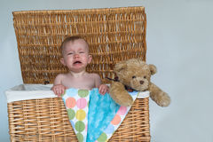 Baby and Teddy. Image of a cute, fussy baby and a teddy bear peeking out of a wicker trunk Stock Photo
