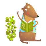 Baby Teddy Bear Character Reading Book Learning Royalty Free Stock Image