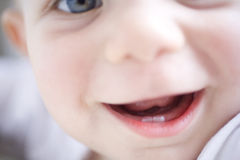 Baby teeth Stock Photo