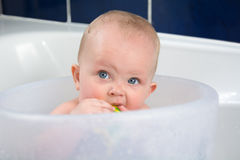 Baby Teething. Blue eyes baby girl having a bath looking up and chewing on rubber toy Stock Images