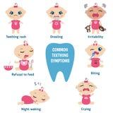 Baby teething symptoms Stock Image
