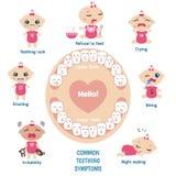 Baby teething symptoms Royalty Free Stock Photo
