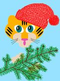 Baby tiger with a fir-tree Royalty Free Stock Photography