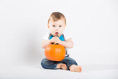 Baby About to Eat Pumpkin Stem. A cute 1 year old sits in a white studio setting with a pumpkin. The boy looks as if he is about to eat the pumpkin stem while Stock Images