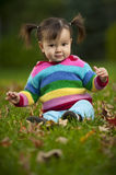 Baby toddler sitting on grass in fall season. Baby toddler wearing colorful clothing and sitting on grass in fall season Stock Photo