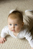 Baby toddling. Boy with diaper scrambling ahead Stock Image
