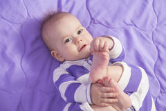 Baby toes Stock Image