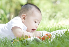 A baby and tomato. An Asian baby on grass is looking at   and trying to get tomatoes Stock Image