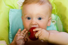 Baby and tomato. Baby boy and red tomato in hands Royalty Free Stock Photos