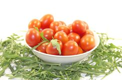 Baby tomatoes and rocket Stock Photography