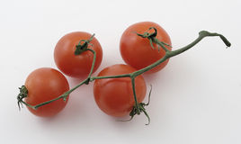 Baby tomatoes on a vine. Against white background Royalty Free Stock Images