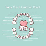 Baby tooth chart record Stock Photos
