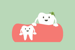Baby tooth and mom - first teeth concept. Dental cartoon vector, baby tooth and mom - first teeth concept Royalty Free Stock Image