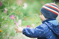 Baby touches the flower. And smiling stock photos