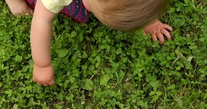Baby touching green grass stock footage