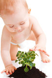 Baby touching plant Royalty Free Stock Images