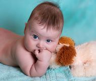 Baby with the toy Stock Photography