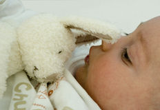 Baby with a toy. Face of a baby from  profile with a soft toy Royalty Free Stock Photo