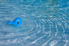 Baby toy swimming stock image