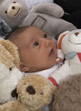 Baby and toys 1. A 3 month old baby surrounded by cuddly toys stock image