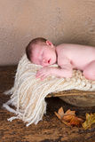 Baby in trench bowl Royalty Free Stock Images