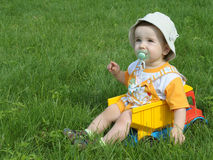 A baby in the truck on the grass Stock Image