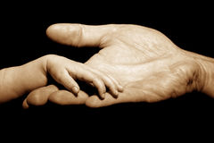 Baby trusts in hand holding. By adult Stock Photography