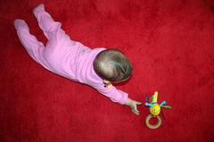 A baby trying to reach her toy. On red carpet Stock Photos