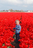 Baby in tulip fields. Cute little boy playing in tulip fields, Holland Royalty Free Stock Images