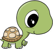 Baby Turtle Vector. Cute Baby Turtle Vector Illustration Stock Photography