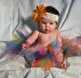 Baby in TuTu Stock Photography
