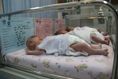 BABY TWINS THREE Stock Photography