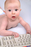 Baby Typist. Baby with Keyboard Stock Photography
