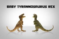 Baby Tyrannosaurus rex Stock Photos