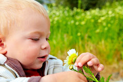 Baby und Gänseblümchen Stockfotos