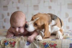 Baby und Spürhund Lizenzfreies Stockbild