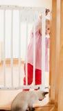 Baby und Treppengitter Stockbilder