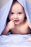 Baby under blanket Royalty Free Stock Image