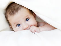 Baby under blanket. Baby girl is hiding under the white blanket Stock Image