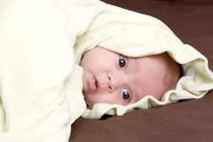 Baby under the blanket Stock Images