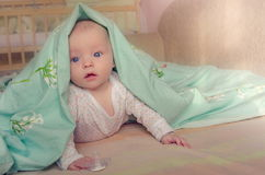 Baby under blanket Stock Image