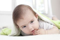 Baby under blanket Stock Images